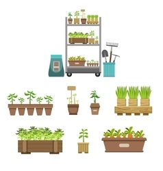 Gardening Related Objects Collection vector image vector image