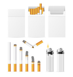 realistic cigarette and accessory set vector image