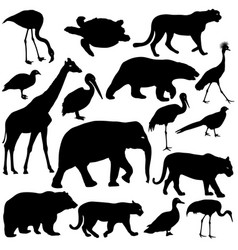 Silhouette elephant tiger bear giraffe flamingo vector