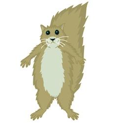 Squirrel cute vector