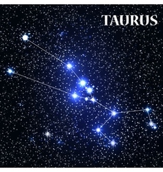 Symbol taurus zodiac sign vector