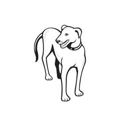 Dog standing front cartoon vector