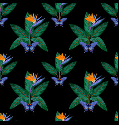 Strelitzia and butterfly seamless pattern vector