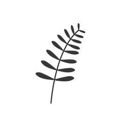 Gray scale branch with symmetrical leaves vector