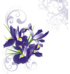 romantic floral illustration v vector image