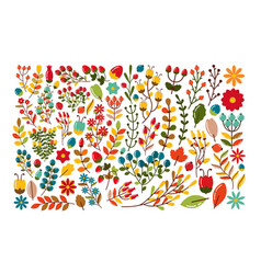 autumn decorative set of berries and twigs vector image