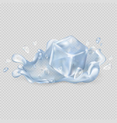 Ice cube drops in water isolated vector