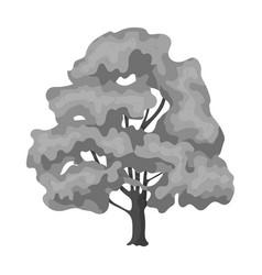 canadian maple canada single icon in monochrome vector image
