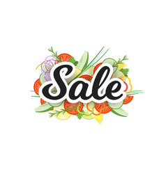 sale banner with vegetables isolated on white vector image vector image