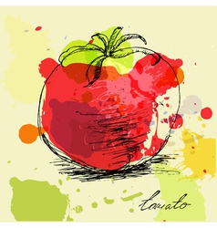 Stylized tomato vector