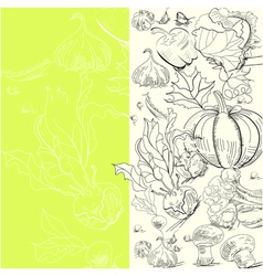 vegetables sketch vector image