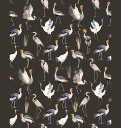Watercolor african crane pattern vector