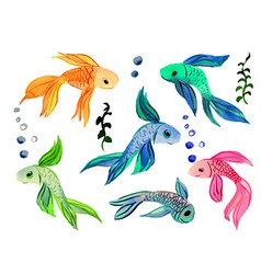 Collection fish watercolor isolated on a white vector