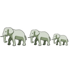 Elephants vector