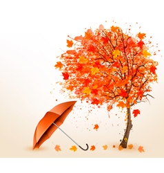 Autumn background with autumn leaves and red vector