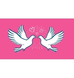 White dove flying wedding love symbol vector