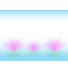 Soft waterlily card vector