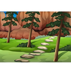 A forest with big rocks vector