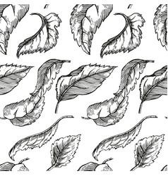 Apple tree sketch for design vector
