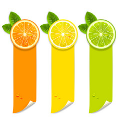 banners with orange lemon and lime vector image