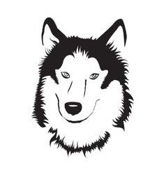 Siberian husky stock vector