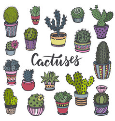 Collection of hand drawn cactuses in sketch style vector