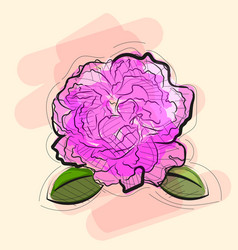 Rose in tattoo style vector