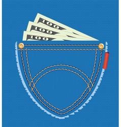vector illustration of dollar banknotes in the poc vector image