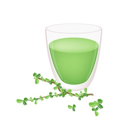 A glass of green tea with green leaves vector