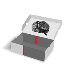 box for brain vector image