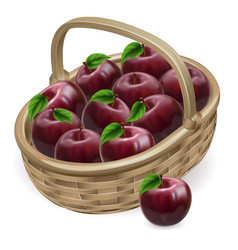 Red apple basket vector