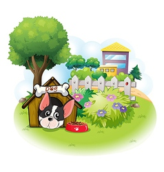 A dog with a doghouse across the high buildings vector