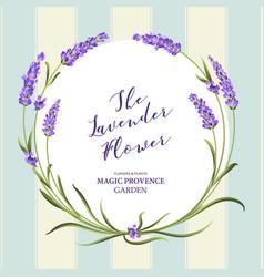 The lavender wreath vector