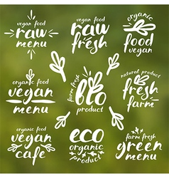 Raw vegan labels and badges vector