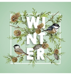 Winter christmas design in winter birds with pines vector
