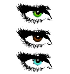 colored eyes vector image