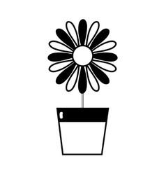 Contour sunflower with petals inside to flowerpot vector