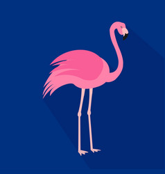 flamingo cartoon flat icon brazil vector image vector image