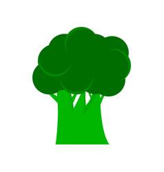broccoli icon flat sign vector image vector image
