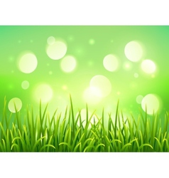 Green grass on bokeh light effect background vector
