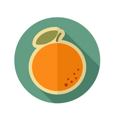 Orange flat icon tropical fruit vector