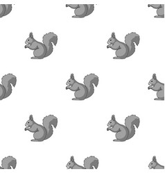 squirrelanimals single icon in monochrome style vector image