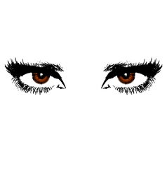 Womens brown eyes vector