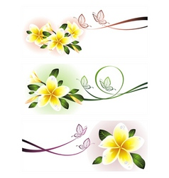 Romantic floral banners vector