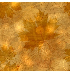 Autumnal leaves pattern vector
