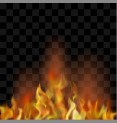 Hot red burning fire flame with flying embers vector