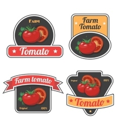 Set of tomato labels and symbols Vintage Vegetable vector image