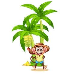A very happy monkey near the banana plant vector image