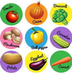 Fresh vegetable in round tags vector