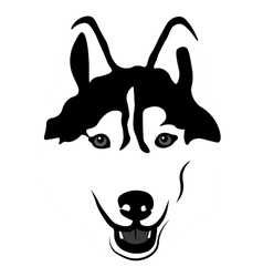 Siberian husky portrait isolated vector